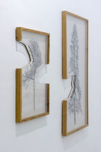 botanics_politics_installation_view_gosztola_7_small
