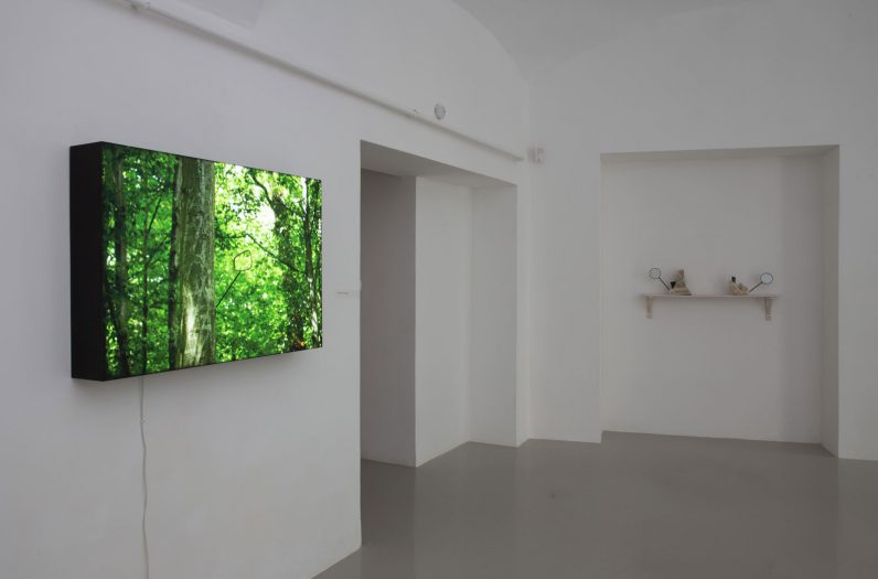 5_installation-view-with-works-of-alex-mirutziu